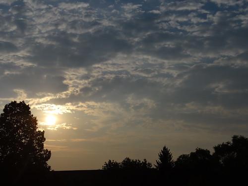 Sonnenaufgang vor langer, gelbgrauer Düne, weites blaues Meer, zuckt um meine ernste Miene der Dünenhafer hin und her, stille Einsamkeit, spendet süße Gefühle, lang nicht mehr gekannt, auf meine Füße rinnt leise der gelbe Sand 01786