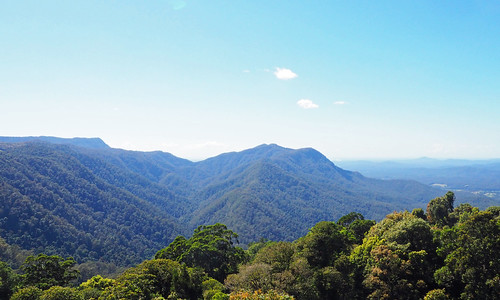 kaptainkobold dorrigo scenery view landscape green hills mountains nationalpark nature nsw australia