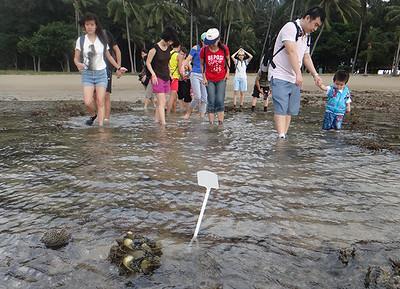 Public walk at Sisters Island Marine Park (15 Aug 2014)