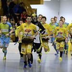 Herren I - Playoff Spiel 2 - Floorball Thurgau Saison 2013/14