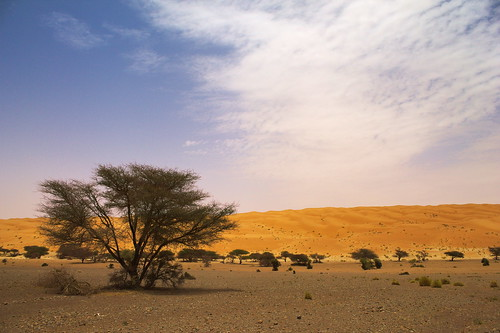 The Call Of The Sahara | by ammar01uk