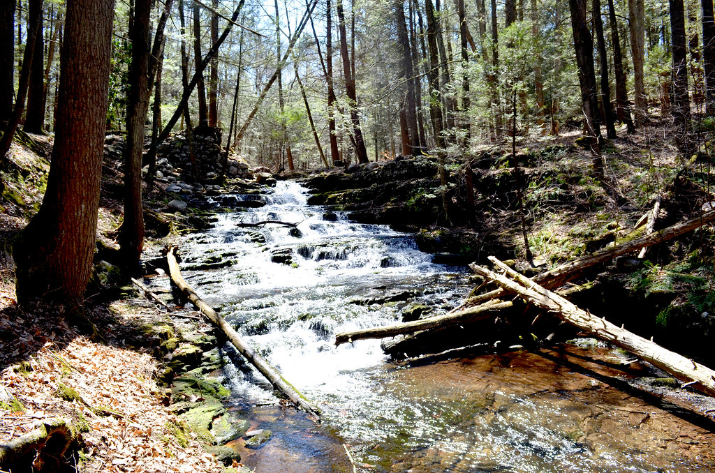 Stokes State Forest, NJ