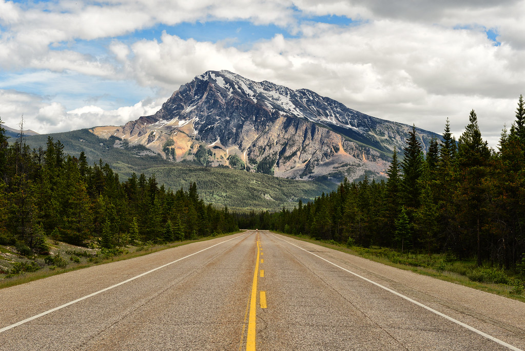Road to the Canadian Rockies