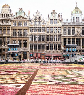 flower carpet brussels | by The Art of Exploring