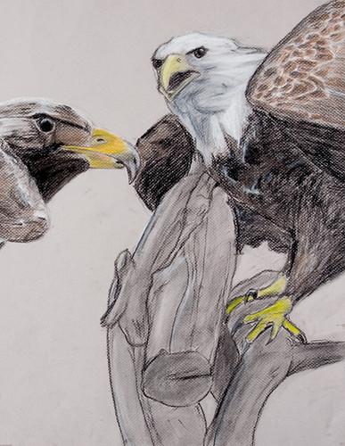 2008 Student Artwork Slideshow