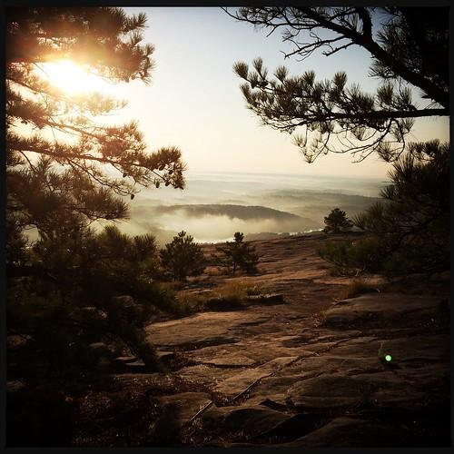 tree nature fog stone sunrise stonemountain geogria hipstamatic janelense