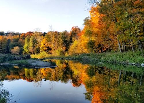 autumn fall colors scarborough toronto