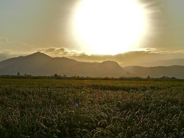 Atardecer desde la tierra de arroz. Explore 29/8/2014
