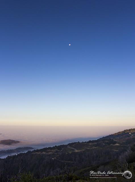 Palomar Moon