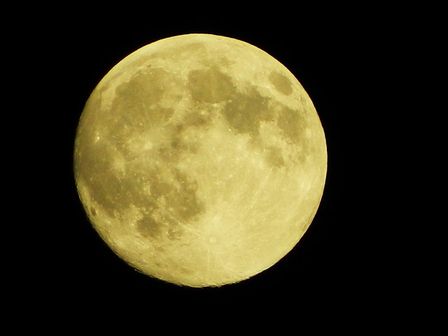 Taken in the night sky August 10, 2014