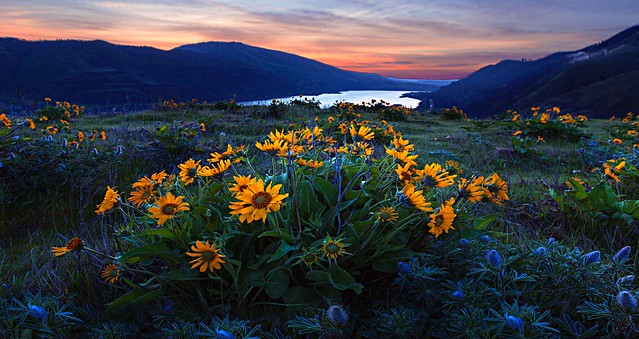 Sunset at Rowena Crest (Columbia Gorge, OR)