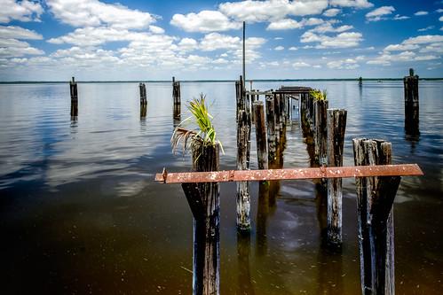sky usa cloud lake reflection tree water landscape dock florida cloudy palm sanford centralflorida edrosack