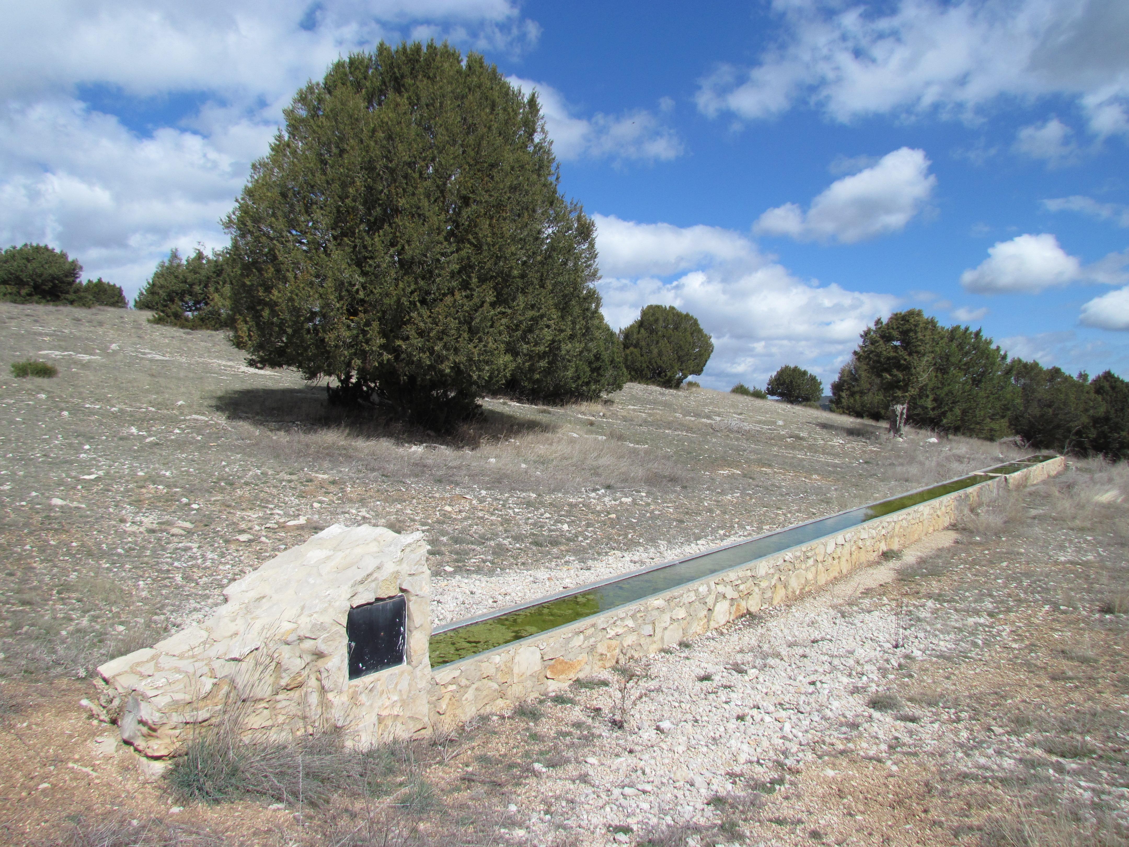 SAL_12_M.A.Martín_GAMELLONES ALTO ALEGAS 2