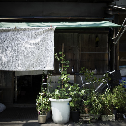Shaded Garden Home with Bicycle, Kita Senju, Tokyo | by jacob schere [in the 03 strategically planning]