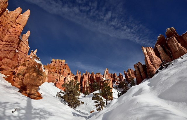 An Open Amphitheater for the Hoodoos (Bryce Canyon National Park)