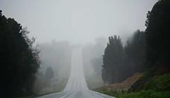 Camino a lo desconocido, Chiloé