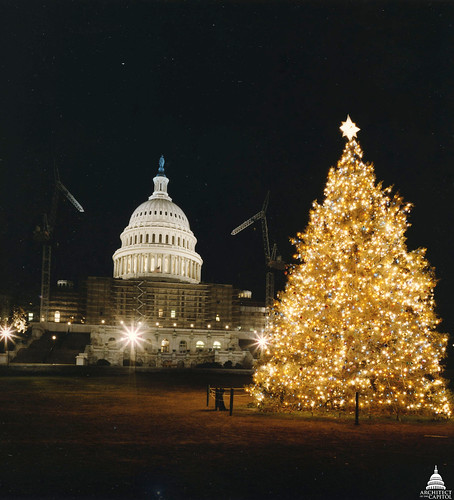 1985 U.S. Capitol Christmas Tree | by USCapitol