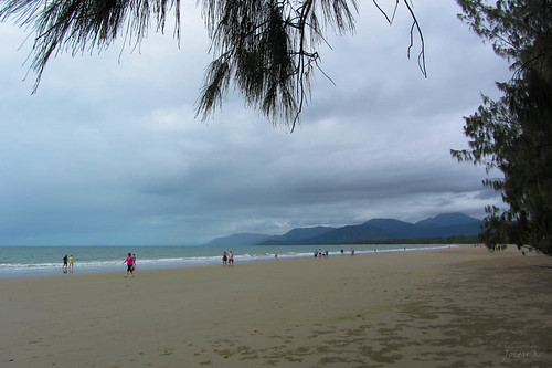 trees sea sky people beach water clouds sand hills queensland tropical portdouglas austraila