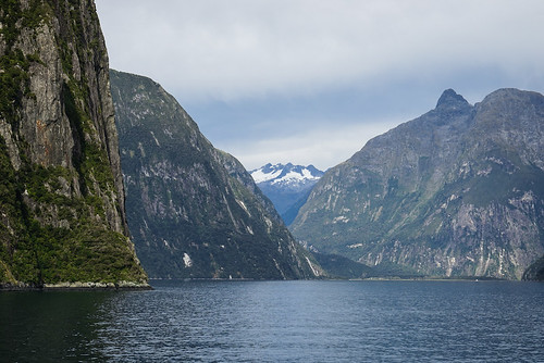 Milford Sound Boat Trip | by Mike Beauchamp