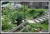 Egyedi kertet szeretne?