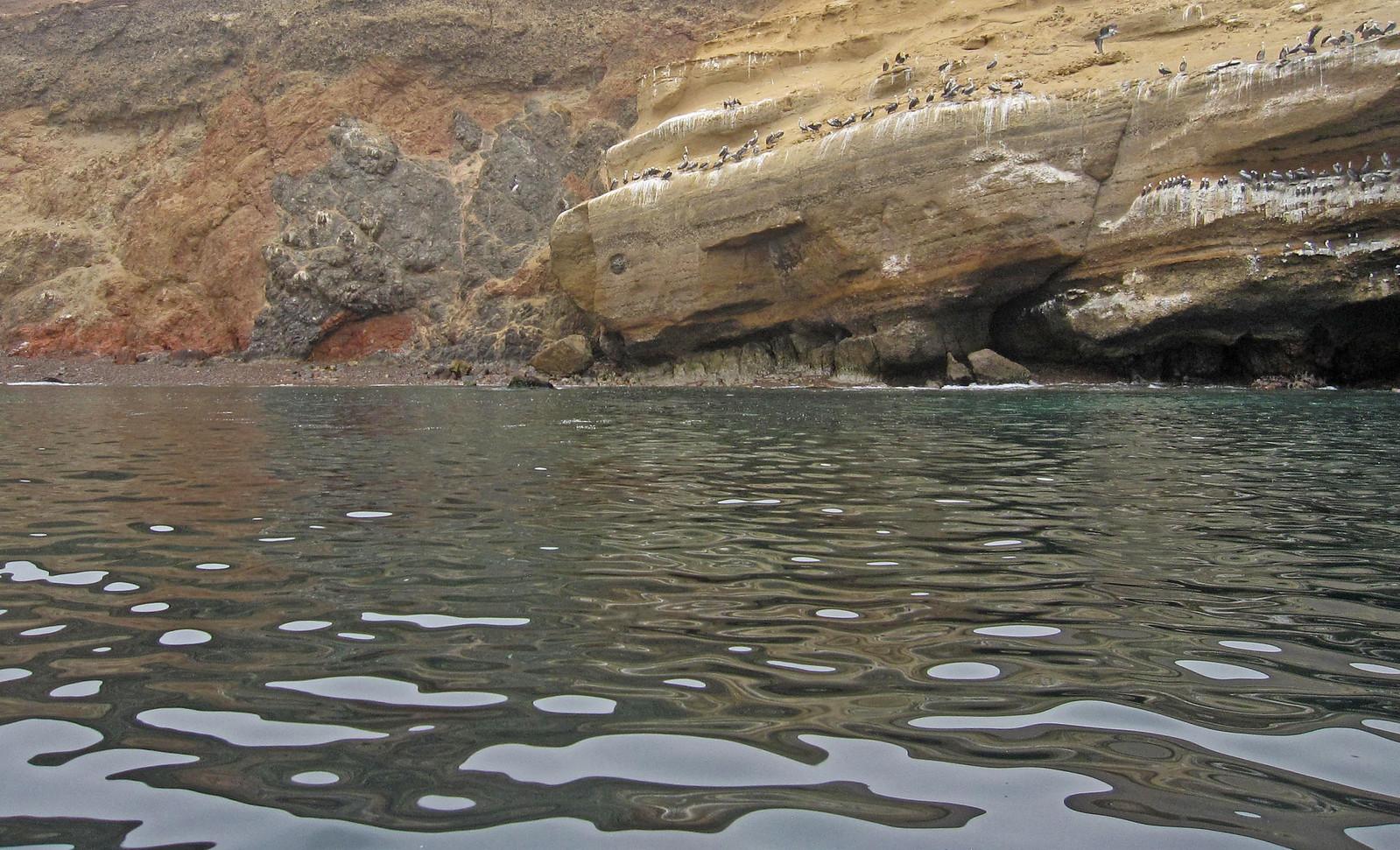 a Islas Ballestas 29