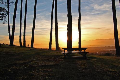 nature sunrise bench picnic view hiking reserve hike western cape tygerberg