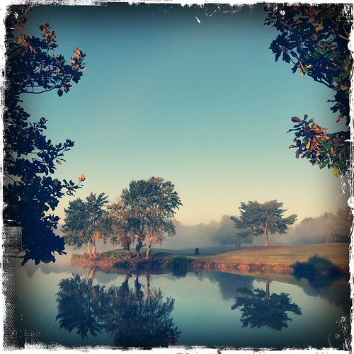 morning trees fall water fog square landscape pond october pretty goodmorning 2014 iphone6 hipstamatic kodotxgrizzledfilm tejaslens iphone6plus