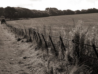 Fridays Fence | by Mr B's Photography