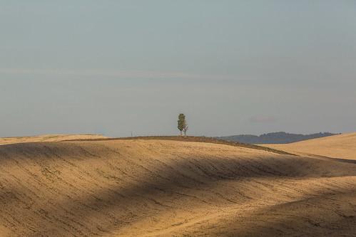 Italia-31.jpg