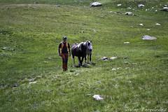 """Guti y los caballos, """"El hombre que susurraba a los caballos"""""""