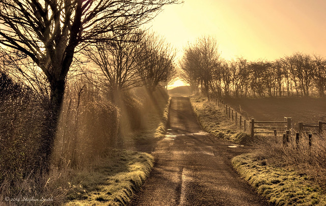 March Morning at Three Gates, Grange Road