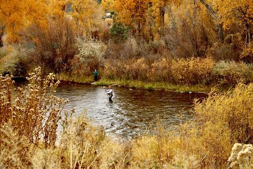water river fishing colorado flyfishing pls47 rockymountains colors carbondalecolorado roaringforkriver