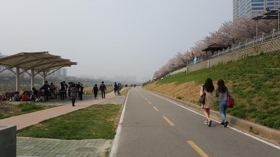 Nguyen, Anna; South Korea - Episode 12 (18)