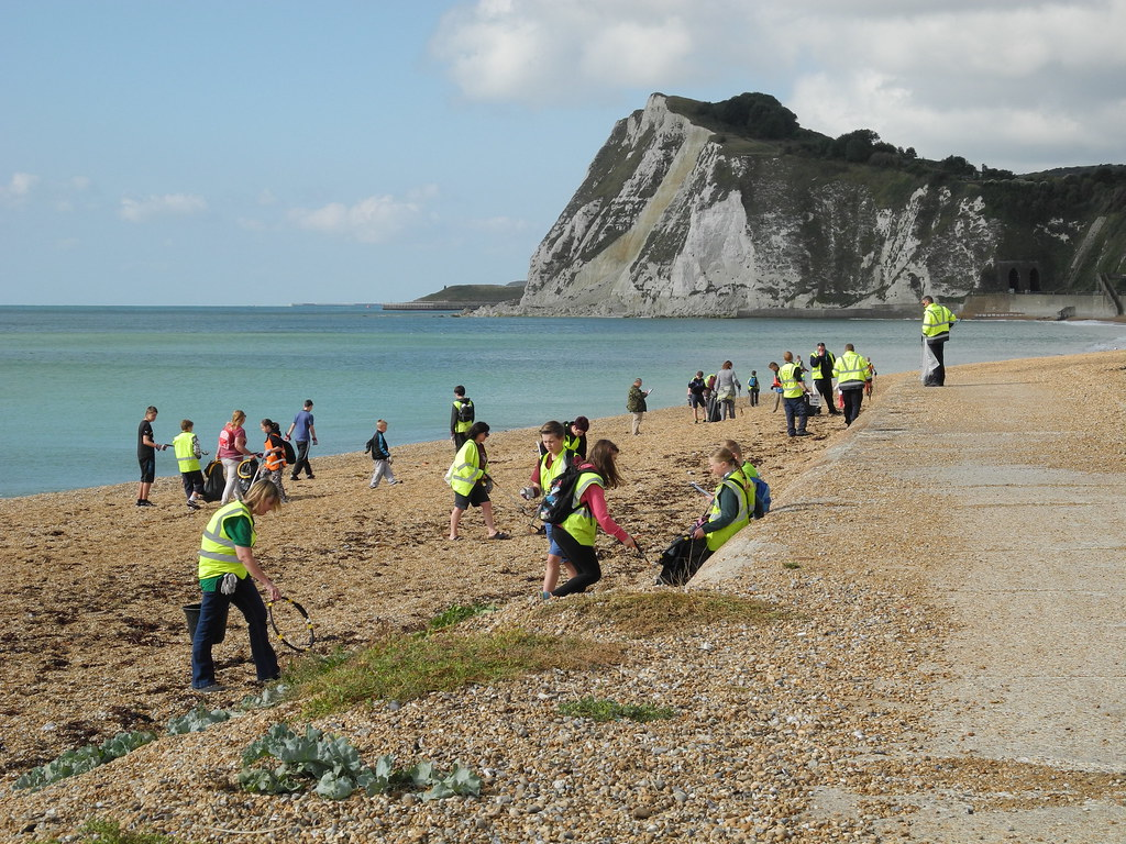 Image result for the big green beach clean