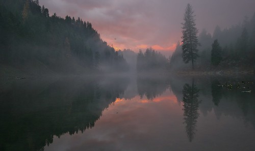 november autumn trees sunset reflection fog clouds washington canon20d waterscape marilynhassler omadarlingphotography