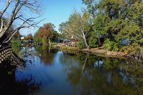 trees louisiana bayou houma waterscape terrebonneparish ilobsterit
