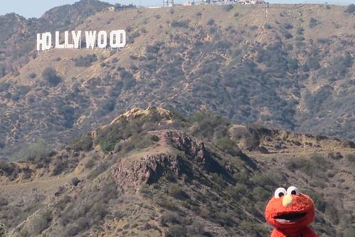 Hollywood Elmo | by Jake Cvnningham