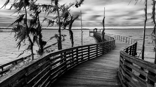 2016 alpinegrovespark december florida landscape landscapephotography nature naturephotography outdoors park photography pier river seascape shore staugustine stjohnsriver unitedstates vacation cloudy digital fruitcove us cove switzerland riverfront