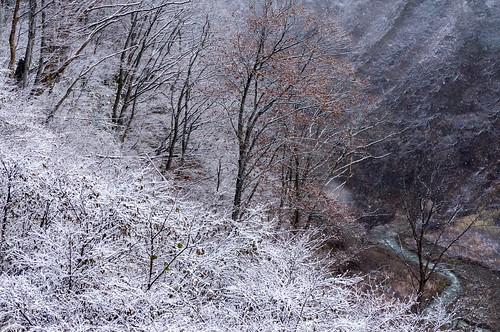 秋が冬に譲るとき | by hiroching