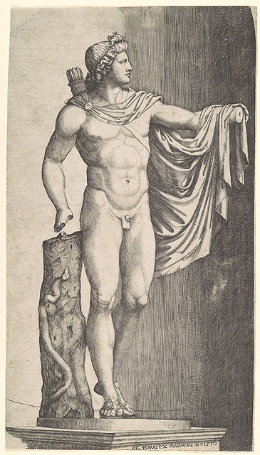 Engraving of the Apollo Belevedere