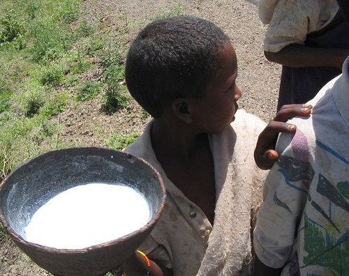 camel milk | by guuleed