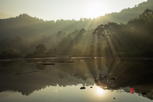 light lake tree yellow sunrise reflections indonesia landscape nikon d750 rays westjava gunung situ 1635mm darrellneo
