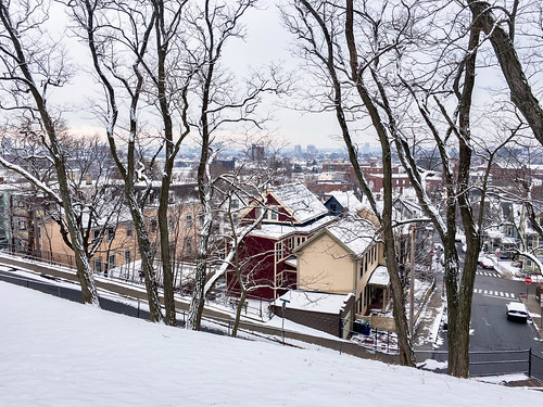 somerville somervillema massachusetts newengland snow winter seasons seasonal season rooftops trees baretrees houses boston iphone iphone6s