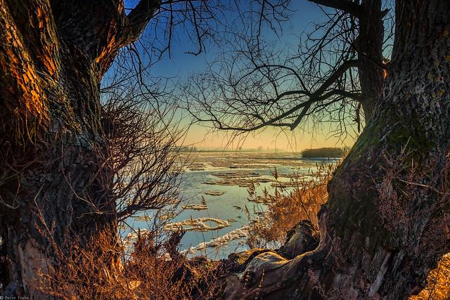 Wintertag an der Oder 2