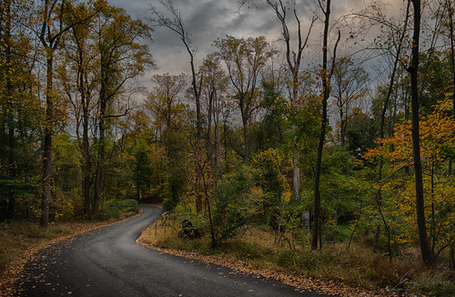 road new autumn trees fall nature clouds landscape colorful moody sony jersey asphalt grayday westorange southmountainreservation westorangenj nex5t