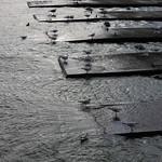Docks, Preston