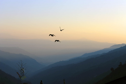 sunset sky india blur color fauna digital photoshop canon lens geotagged photography eos fly focus asia flickr photos dusk pigeon clear mountainrange stillphotography cs6 manebhanjang soumenray