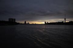 Kop van Zuid, Rotterdam