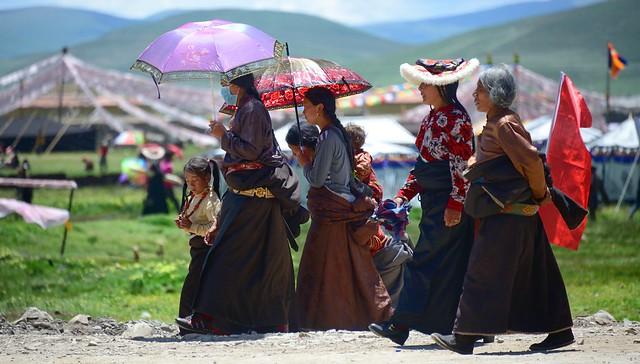 Mothers of Tibet, 2014