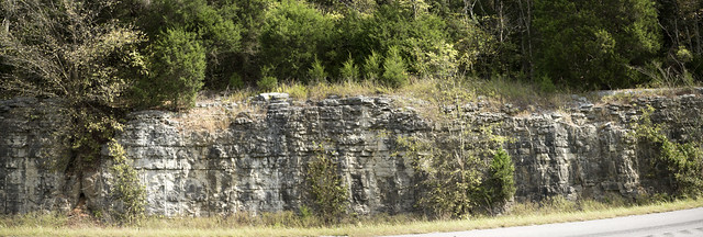 Warsaw Formation, I-24 westbound, Grundy County, Tennessee